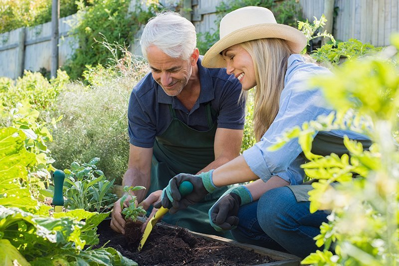Reverie gardening and community building